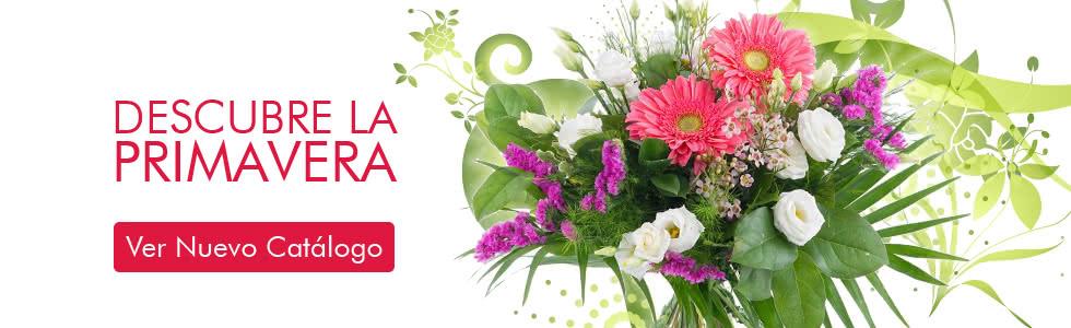 Nuevo Catálogo de Primavera Interflora